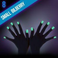 Ozdobný prach Glow - 8. Small Bilberry